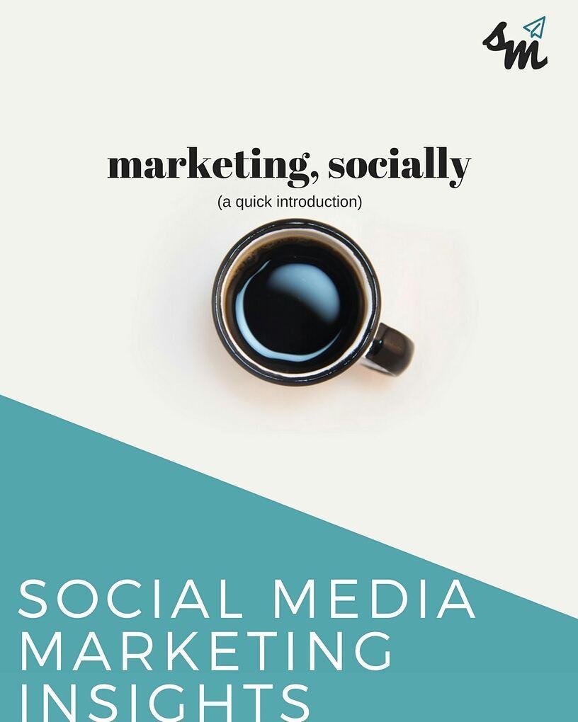 social media marketing insights book cover